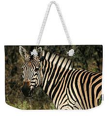 Zebra Watching Weekender Tote Bag