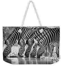 Zebras Drinking Weekender Tote Bag by Inge Johnsson