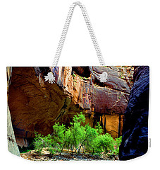 Zion Narrows #2 Weekender Tote Bag