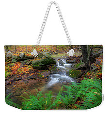 Weekender Tote Bag featuring the photograph Autumn Falling by Bill Wakeley
