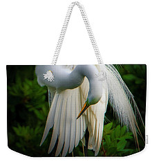 Weekender Tote Bag featuring the photograph Breeding Plumage And Color by Donald Brown