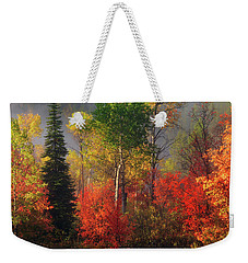 Weekender Tote Bag featuring the photograph Color And Light by Leland D Howard
