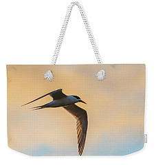 Crested Tern In The Early Morning Light Weekender Tote Bag
