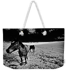 Weekender Tote Bag featuring the photograph Horses On The Palouse by David Patterson