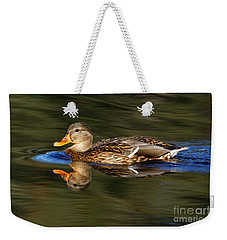 Weekender Tote Bag featuring the photograph Mallard Duck by Sue Harper