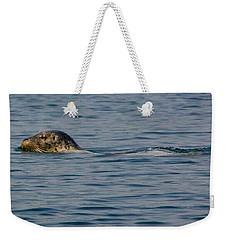 Pacific Harbor Seal Weekender Tote Bag