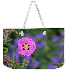 Weekender Tote Bag featuring the photograph Purple Flowered Rock Rose by Tim Gainey