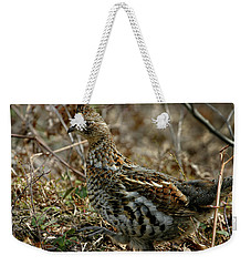 Weekender Tote Bag featuring the photograph Ruffed Grouse 50702 by Rick Veldman