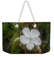 Weekender Tote Bag featuring the photograph Sundew by Elaine Teague