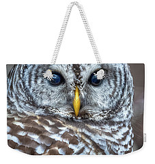 Barred Owl Weekender Tote Bag