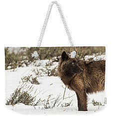 W6 Weekender Tote Bag