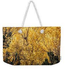 Weekender Tote Bag featuring the photograph Autumnal Park. Autumn Trees And Leaves. Fall by Alex Grichenko