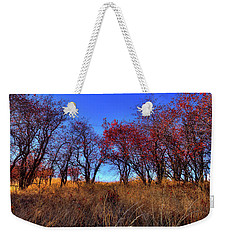 Weekender Tote Bag featuring the photograph Autumn Light by David Patterson