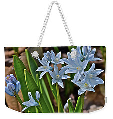 2019 Early April Striped Squill Weekender Tote Bag