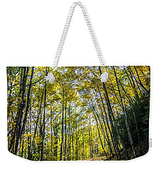 Weekender Tote Bag featuring the photograph Scenic Views Along Virginia Creeper Trail by Alex Grichenko