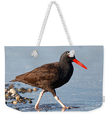 Weekender Tote Bag featuring the photograph Black Oystercatcher by Sue Harper