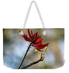 Coral Tree Flowers Weekender Tote Bag