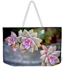Weekender Tote Bag featuring the photograph 3 Succulents by John Rodrigues