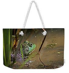 A Frog Waits Weekender Tote Bag