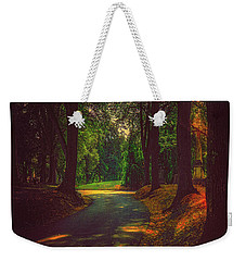 Weekender Tote Bag featuring the photograph A Moody Pathway by Chris Lord