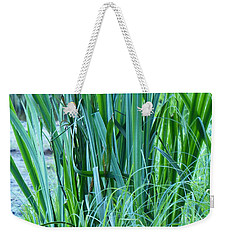 Weekender Tote Bag featuring the photograph A Shock Of Green by Rosanne Licciardi