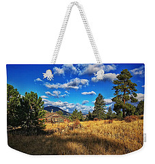 Weekender Tote Bag featuring the photograph Abandoned Cabin by Dan Miller