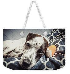 Abbey And Her Injured Paw Weekender Tote Bag