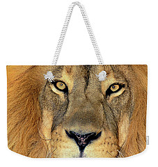 Weekender Tote Bag featuring the photograph African Lion Portrait Wildlife Rescue by Dave Welling