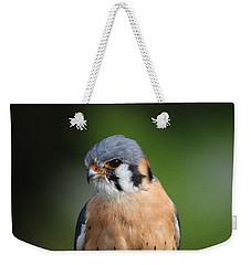 Weekender Tote Bag featuring the photograph American Kestrel 5151801 by Rick Veldman