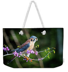 Weekender Tote Bag featuring the photograph American Kestrel 5151804 by Rick Veldman