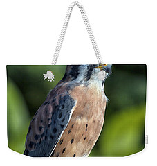 Weekender Tote Bag featuring the photograph American Kestrel 9251501 by Rick Veldman