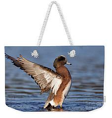 American Wigeon Delight Weekender Tote Bag