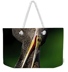Weekender Tote Bag featuring the photograph Anhinga Combing Feathers by Donald Brown