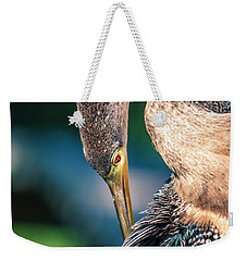 Weekender Tote Bag featuring the photograph Anhinga Grooming by Donald Brown