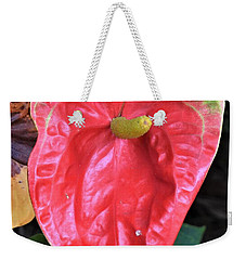 Weekender Tote Bag featuring the photograph Anthurium  by James Fannin