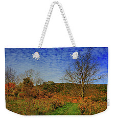 Weekender Tote Bag featuring the photograph Appalachian Trail Massachusetts In The Fall by Raymond Salani III