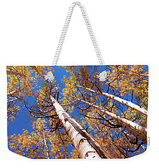 Weekender Tote Bag featuring the pyrography Aspen Trees Against The Sky In Crested Butte, Colorado.   by OLena Art Brand