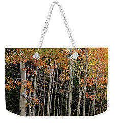 Weekender Tote Bag featuring the photograph Autumn As The Seasons Change by James BO Insogna