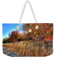 Weekender Tote Bag featuring the photograph Autumn At Magpie Forest by David Patterson