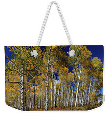 Weekender Tote Bag featuring the photograph Autumn Blue Skies by James BO Insogna