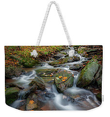 Weekender Tote Bag featuring the photograph Autumn Falling 2 by Bill Wakeley