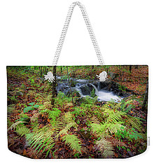 Weekender Tote Bag featuring the photograph Autumn Fern by Bill Wakeley