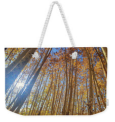 Weekender Tote Bag featuring the photograph Autumn Giants by Tassanee Angiolillo