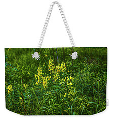 Weekender Tote Bag featuring the photograph Autumn Glow #i0 by Leif Sohlman