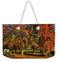 Weekender Tote Bag featuring the photograph Autumn In Reaney Park by David Patterson