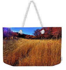 Weekender Tote Bag featuring the photograph Autumn Path by David Patterson