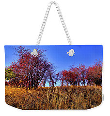 Weekender Tote Bag featuring the photograph Autumn Sun by David Patterson