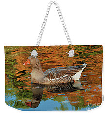 Weekender Tote Bag featuring the photograph Autumn Swim by Debbie Stahre