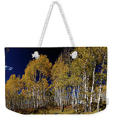 Weekender Tote Bag featuring the photograph Autumn Walk In The Woods by James BO Insogna