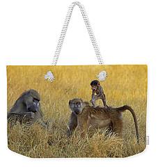 Baboons In Botswana Weekender Tote Bag